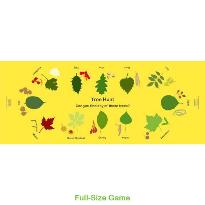 Tree Hunt Gametop Nature Game