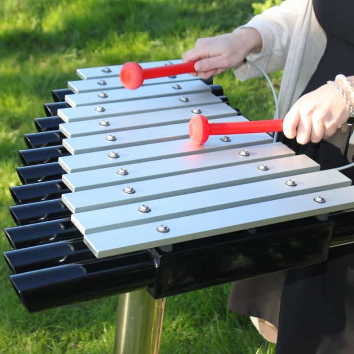 Cadenza Outdoor Xylophone Play Equipment